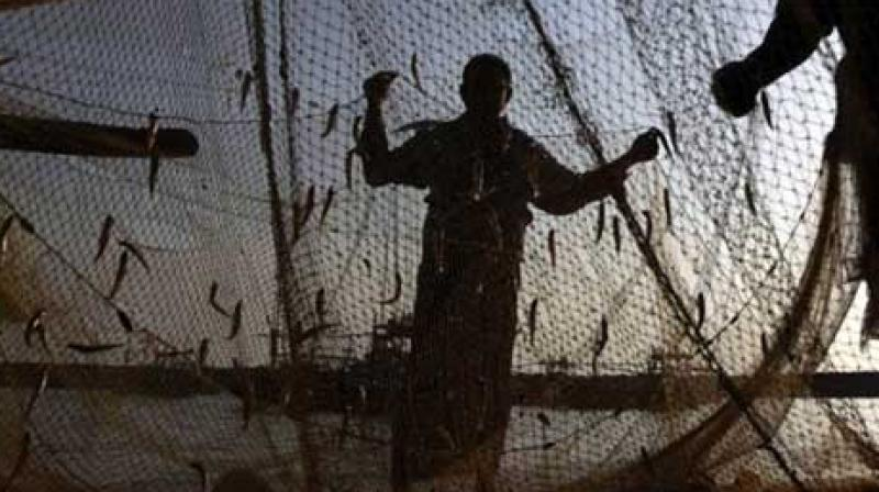 The NGO had helped the fishermen return when neither the state nor central government involved. (Representational Image | PTI)
