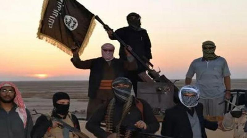 Patel and Del Vecchio also stand accused of contravening the Protection of Constitutional Democracy Against Terrorism and Related Activities Act by hoisting an ISIS flag at a modest homestead in a rural area. (Representational Image)