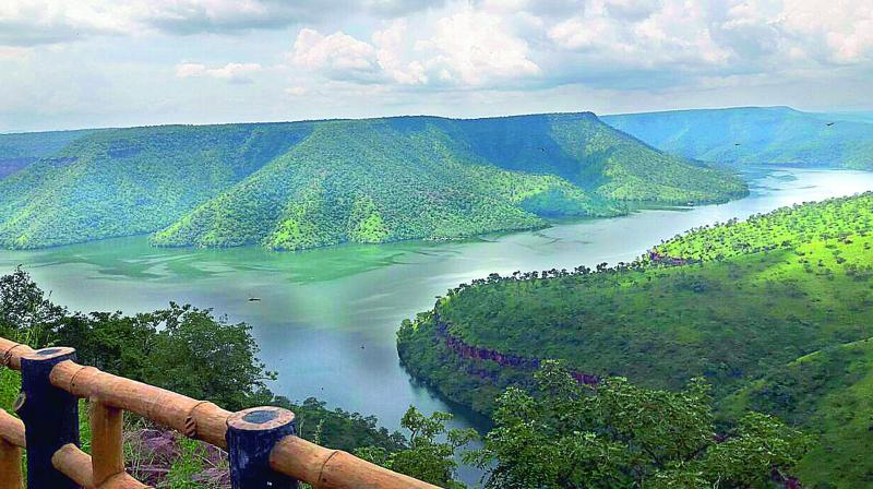 A view of the forests and the Krishna River from Octopus Viewpoint in the Amarabad Tiger Reserve.