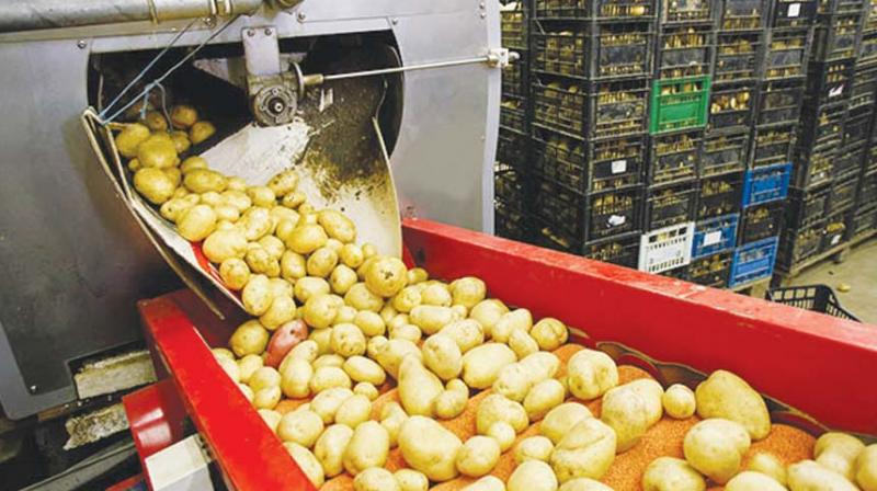 While we work towards the rationalisation of corporate tax rate, in the interim, with a view to provide a growth fillip to the food processing industry, CII suggests few fiscal incentives in the Union Budget to push investments in this sector.