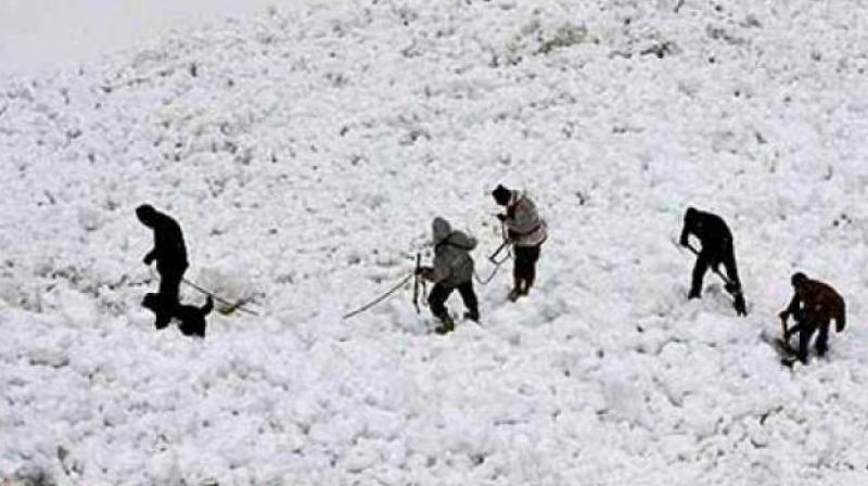 Four of the eight soldiers died after being trapped in snow for hours after an avalanche hit Army position in norther Siachen Glacier on Monday. Two porters also died in the accident. (Representational Image)