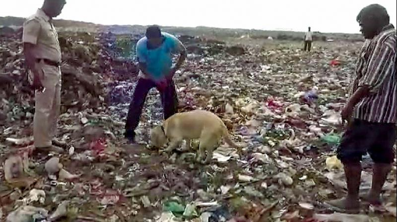 A police sniffer dog, Baison, was taken to the dump yard to help find Sandhya's body parts.