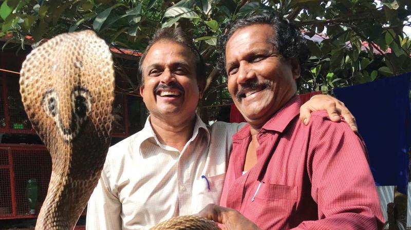 Dr Subair Medammal (left) and snake catcher Shamsudeen Cherpulassery pose with a king cobra.