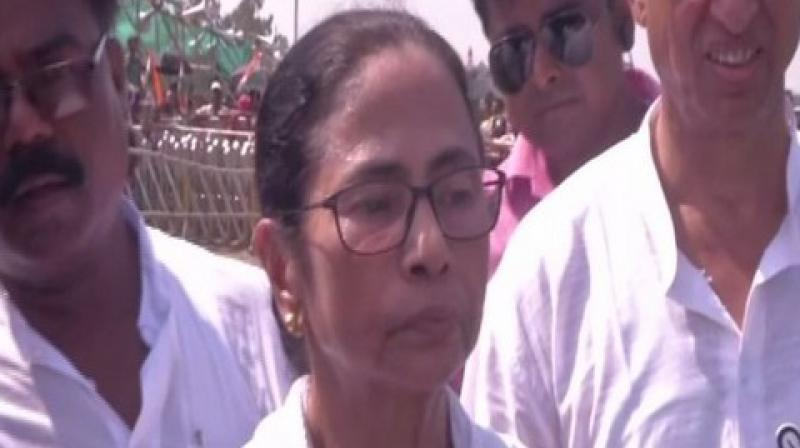 Trinamool Congress supremo and West Bengal chief minister Mamata Banerjee.  (Photo: ANI twitter)