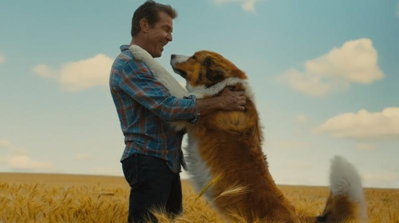 Dennis Quaid in the still from the film.