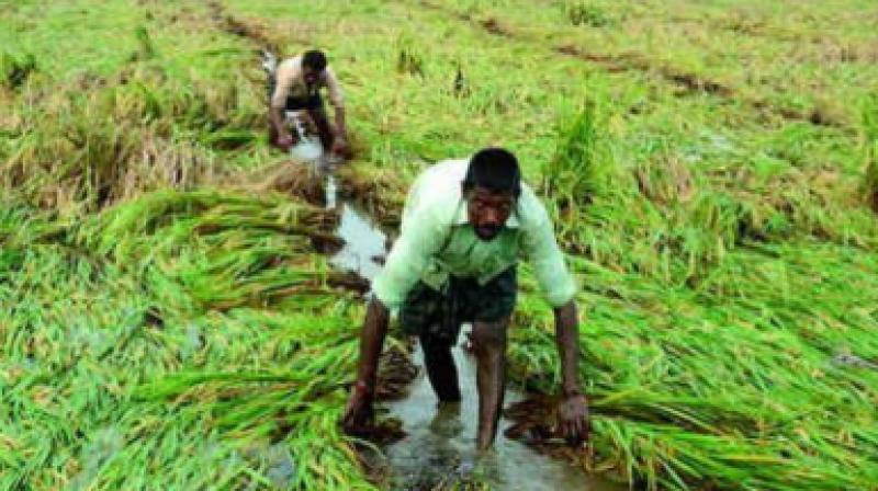 Union home minister Rajnath Singh will also chair the high-level committee meeting on March 23 to look into the drought relief demands made by Tamil Nadu.