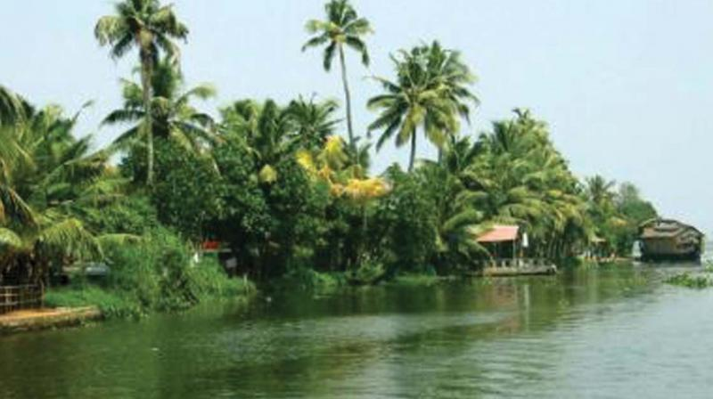 Vembanad Lake. (file pic)