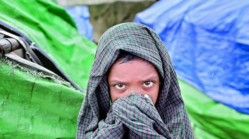 Around 3,00,000 Rohingyas have entered Bangladesh from Myanmar in last two weeks. (Photo: AFP)