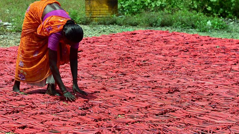 A woman employee drying up crackers at a factory in Sivakasi district in Tamil Nadu. The firecrackers business may be hit by crores due the ban on its sale in Delhi National Capital Region till October 31. (Photo: PTI)