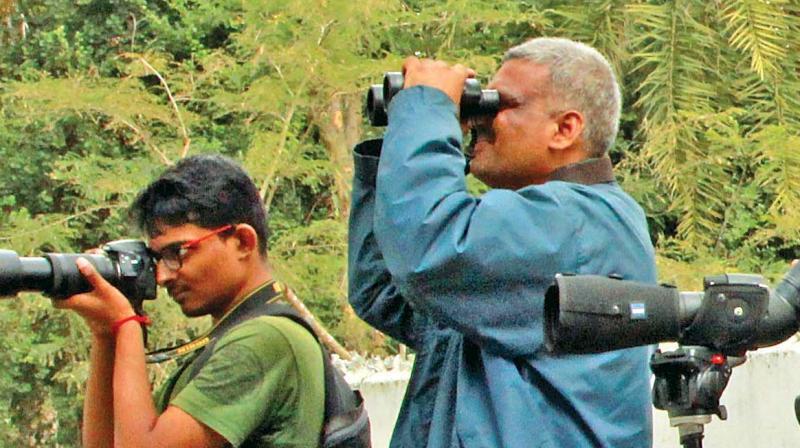 K. Arivoli, district forest officer, Thiruvarur observing the birds. (Photo: DC)