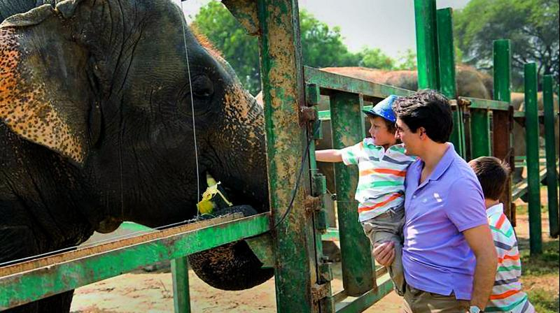 Canadian PM Justin Trudeau visits Indian wildlife sanctuary with family