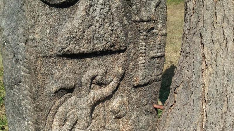 The emblem of Vira Vallan found near Arunachaleshwar temple. (Photo: DC)