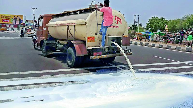 Farmers spill milk on a road during their protest. (Photo: File/PTI)