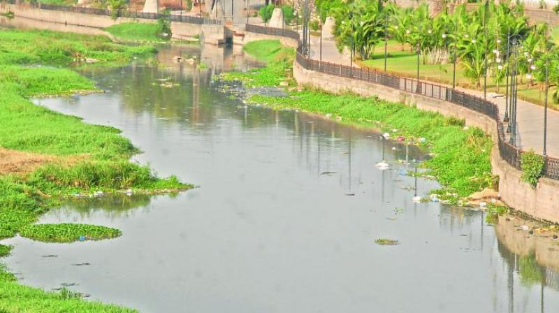 A file picture of Musi river