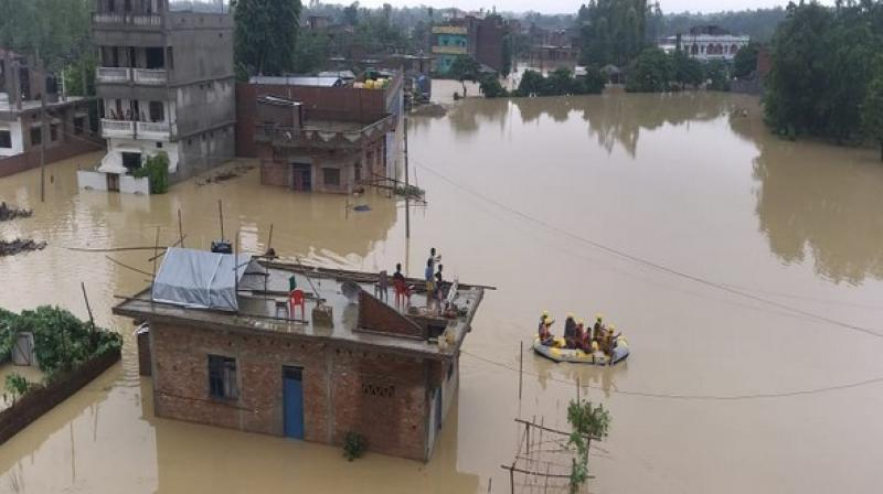 Torrential downpour since Thursday has affected nearly 31 of the 70 districts across Nepal and injured 41 people. (Photo: ANI)