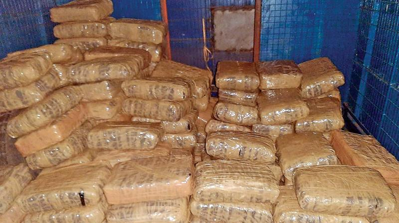 Around 150 parcels, containing a total of 350 kilograms of ganja worth several lakhs seized from the unclaimed van. (Photo: DC)
