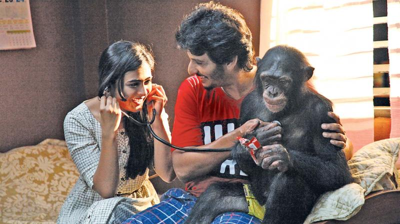 A still from the movie Gorilla.