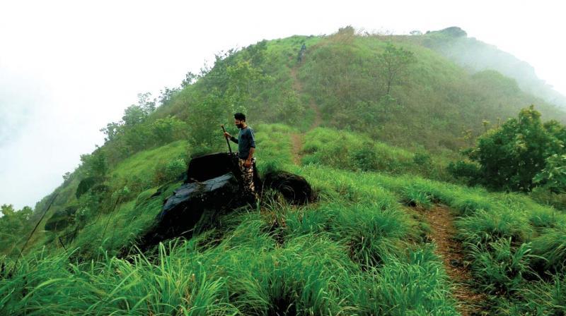 For many, Josegiri is a lesser known trekking spot.