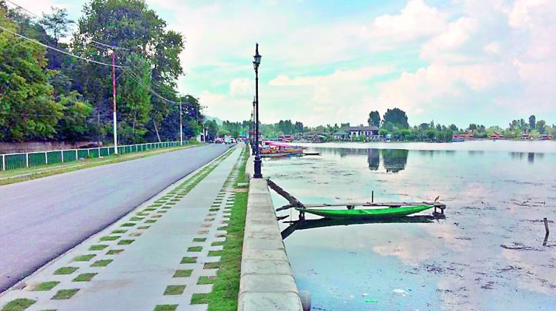 The Dal Lake in Srinagar continues to remain destered as people remain cautious about travel due to abrogation of Article 370 on Sunday (Photo: DC)