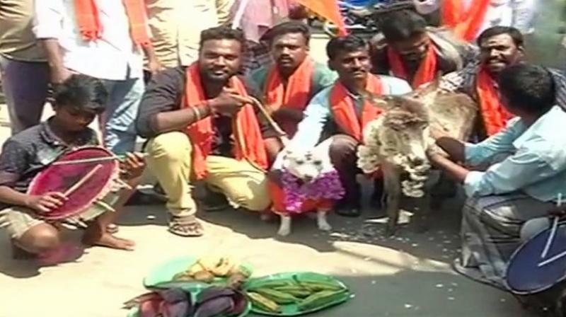 Bharat Hindu Front workers got a dog and a donkey married in protest to indicated their opposition to Valentine's Day.(Photo: Twitter | ANI)