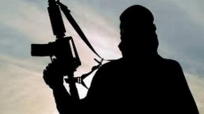 Five Naxals were killed on Saturday in the gun-battle with the DRG in a dense forest area of the district, located about 350 km from the state capital Raipur. (Photo: Representational)