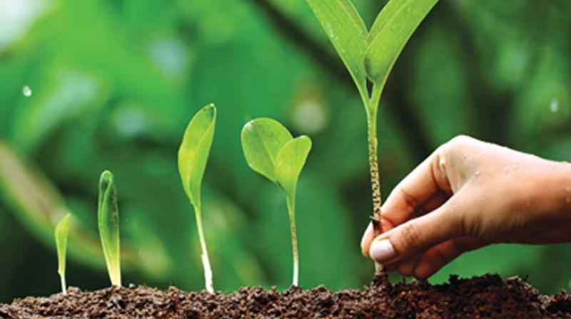 kerala budget 2017 govt not serious on green plans