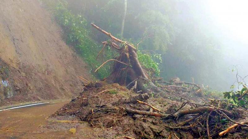The heavy down pour along Coonoor-Burliar slopes triggered minor landslips in around dozen spots between Coonoor and Mettupalayam sector of the Ooty-Coimbatore NH.