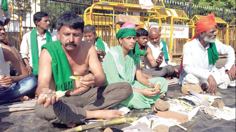 A file photo of sugarcane farmers protesting in Belagavi —KPN