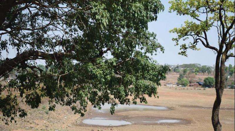 Three rivers flowing through Vilangad-Pulluva,  Valook and Mayalangad -have dried up affecting the agrarian community. The crops, including pepper, cloves, nutmeg and arecanut,  too have wilted without proper irrigation.