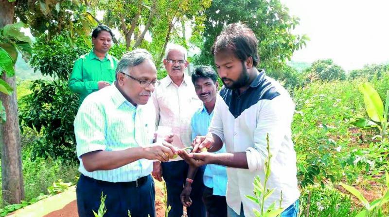 IAS officer T. Vijay Kumar interating with people on organic farming