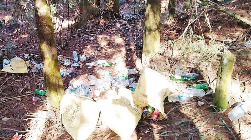Green activists feel that these wastes will not only vitiate the jungle environs but over time, will play spoilsport with the health of the forests and the free ranging wild animals in these jungles.