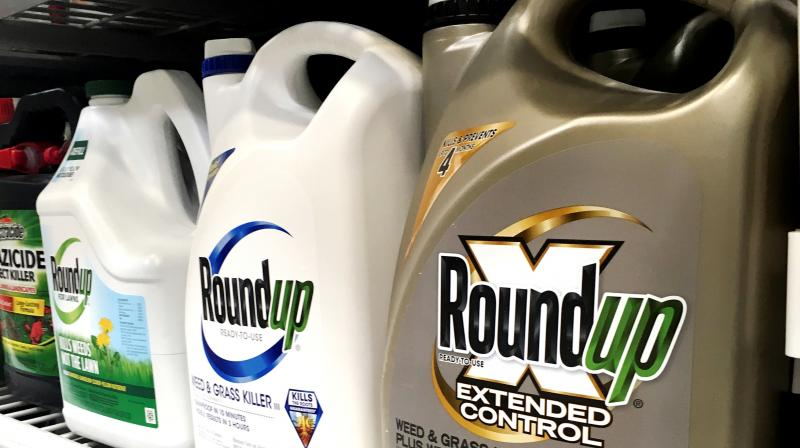 Containers of the alleged carcinogenic weed and grass killer by Monsanto, Roundup, on displayed on a store shelf in San Francisco. (Photo: AP)