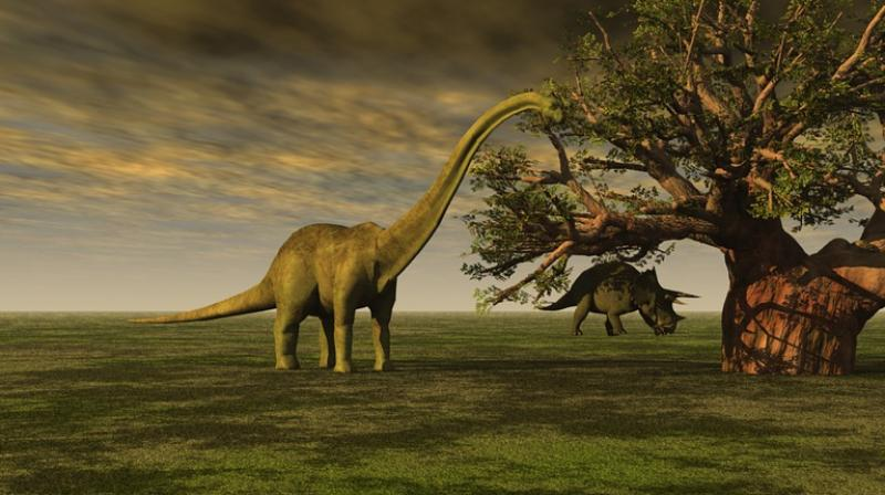 Image result for Dinosaur Discovery Could Shed Light on the Final Age of the Dinosaur in Africa