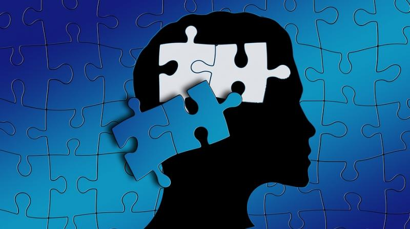 This protein sheds new light on autism and other brain disorders. (Photo: Pixabay)