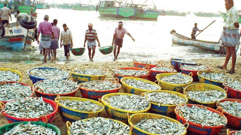 Hundreds of fishermen and families protested against the slaying of their 20-year-old kin Britjo by the Sri Lanka Navy. (Representational image)