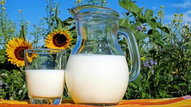 Milk adulterated with oxytocin should be avoided by pregnant women as it may lead to abortion and babies may be born with deformities. (Photo: Pixabay)