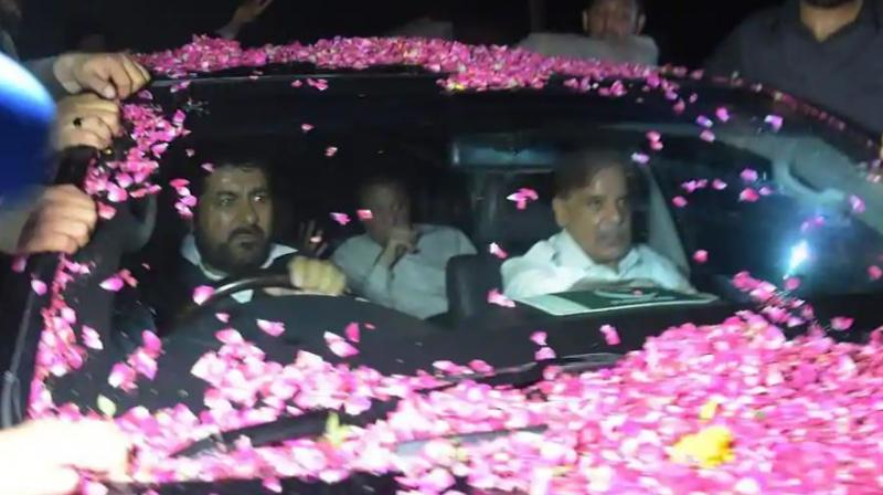Former Pakistani Prime Minister Nawaz Sharif sits in a vehicle alongside his younger brother Shahbaz Sharif (R) following his release from Adiala prison in Rawalpindi on September 19. (Photo: AP)