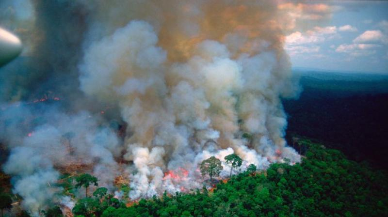 Brazil's Foreign Ministry on Monday ordered its ambassadors in Europe and other G7 countries not to take vacation for the next two weeks in order to coordinate a diplomatic response to global concerns over the fires raging in the Amazon rainforest, two sources with knowledge of the matter said. (Photo: File)