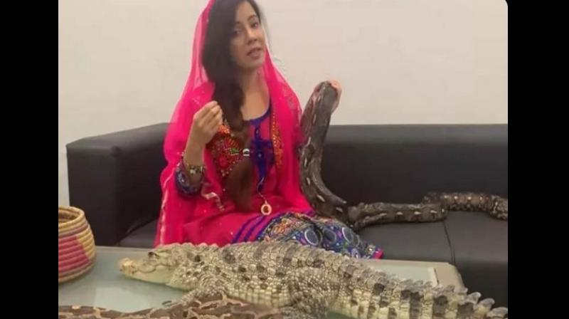 A Pakistani pop star Rabi Pirzada, whose video of threatening Prime Minister Narendra Modi on the Kashmir issue with snakes and crocodiles went viral, has been fined for keeping exotic animals at her beauty salon. (Photo: ANI)