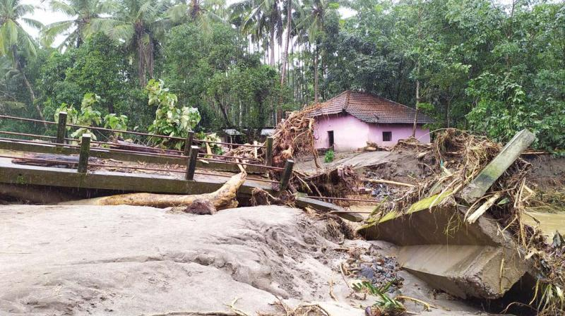 It all happened on  Friday afternoon after heavy rainfall when the villagers heard a huge sound and within minutes, massive trees, boulders and mud, carried by huge waves of water entered their houses and land. (Pics: Gururaj A. Paniyadi)