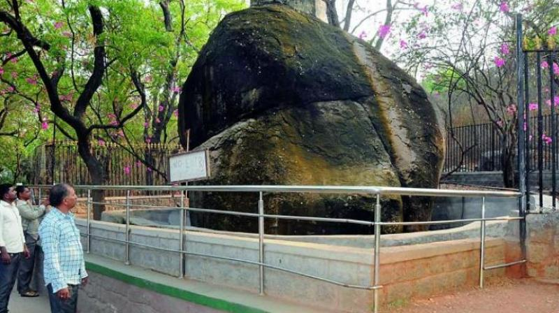 Hyderabad No Relocation Of Nehru Zoological Park