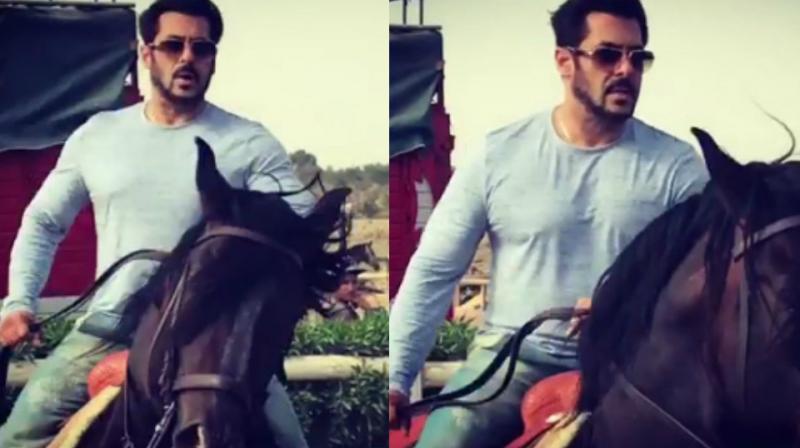 Watch Sleepless Salman Trains In Horse Riding For Tiger Zinda Hai