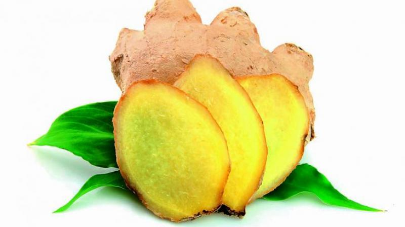 Ginger is actually an ancient herb and has been used since Vedic times for a plethora of medicinal purposes.