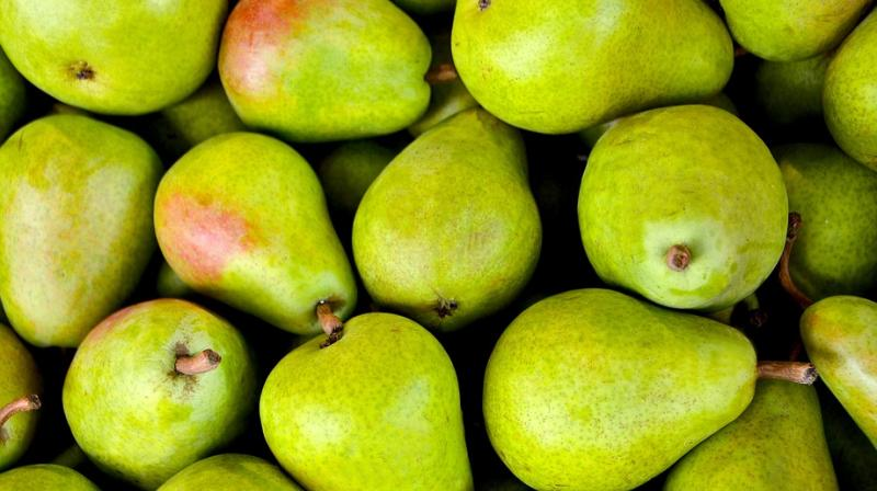 Health benefits of pears. (Photo: Pixabay)