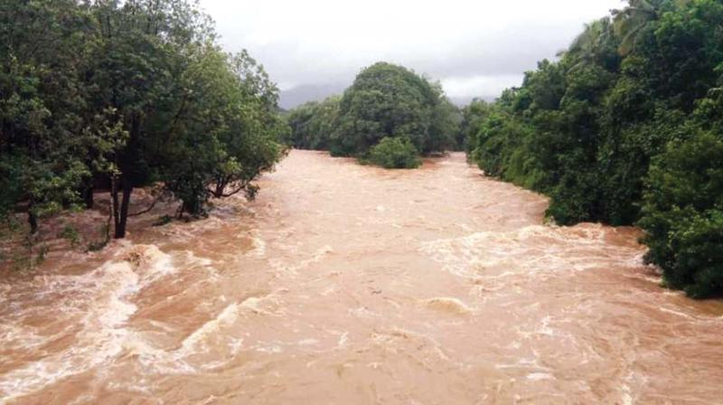 An NDRF team has been stationed at Ratua area in the district for relief and rescue operation. (Photo: Representational)