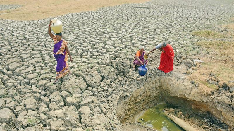 As Korattur lake dries up, locals dig a pit in search of water which they can use to meet their basic needs (Photo: DC)