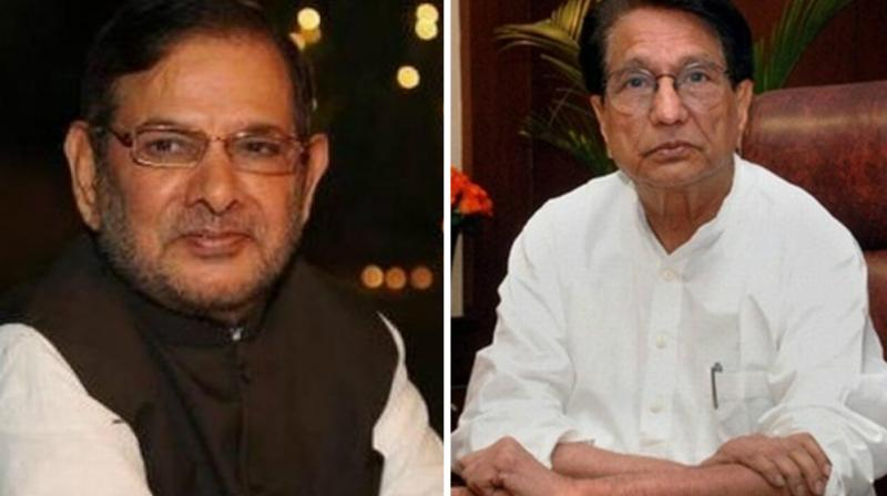 Congress reportedly offered some 20 seats to RLD chief's son Jayant Choudhary, who was reportedly in touch with Congress vice-president Rahul Gandhi. (Photo: PTI)