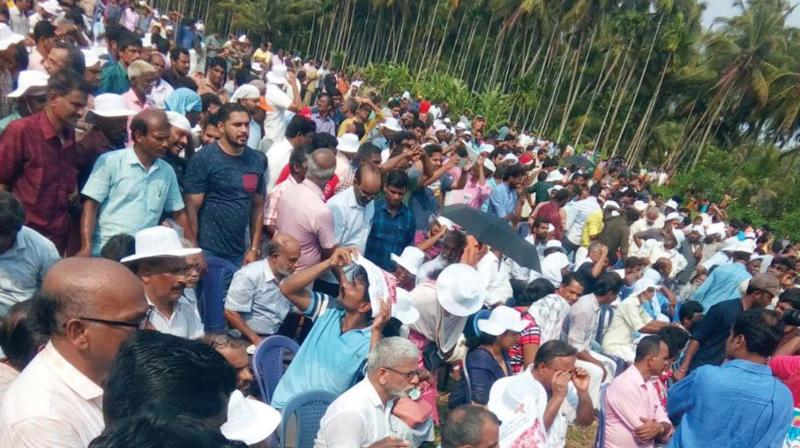 People gather at Keezhattoor paddy field on Sunday to express solidarity with the protesting Vayalkilikal for green cause. (Photo: DECCAN CHRONICLE)