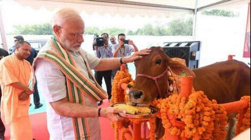 Karan Thapar | BJP has a different take… On history, science, cows!