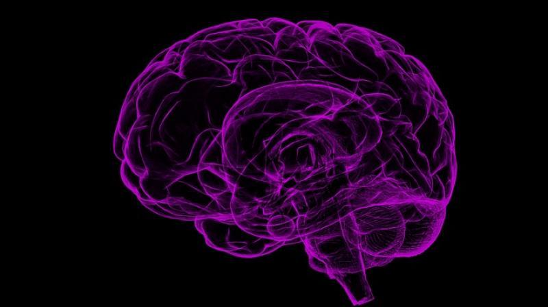 Researchers say brain stimulation could reduce violent crime